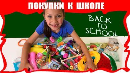 Back to School Самые КРУТЫЕ Покупки к Школе Школьные Принадлежности с Aliexpress /// Вики Шоу